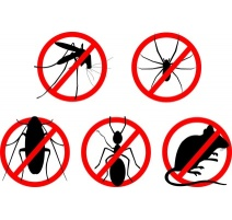 INSECTICIDES-RATICIDES-REPULSIFS